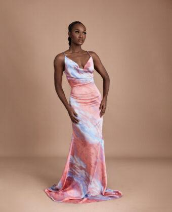 The Desi Dress